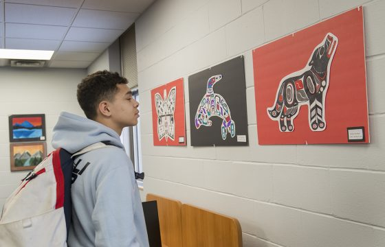 Student from Cass-Lake observing the artwork.