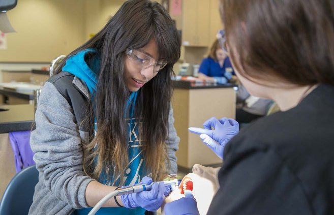 A student explores NTC's Dental Assisting program at the college's March 21 Passport to the Future event.