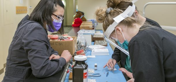 Students back in the dental lab.